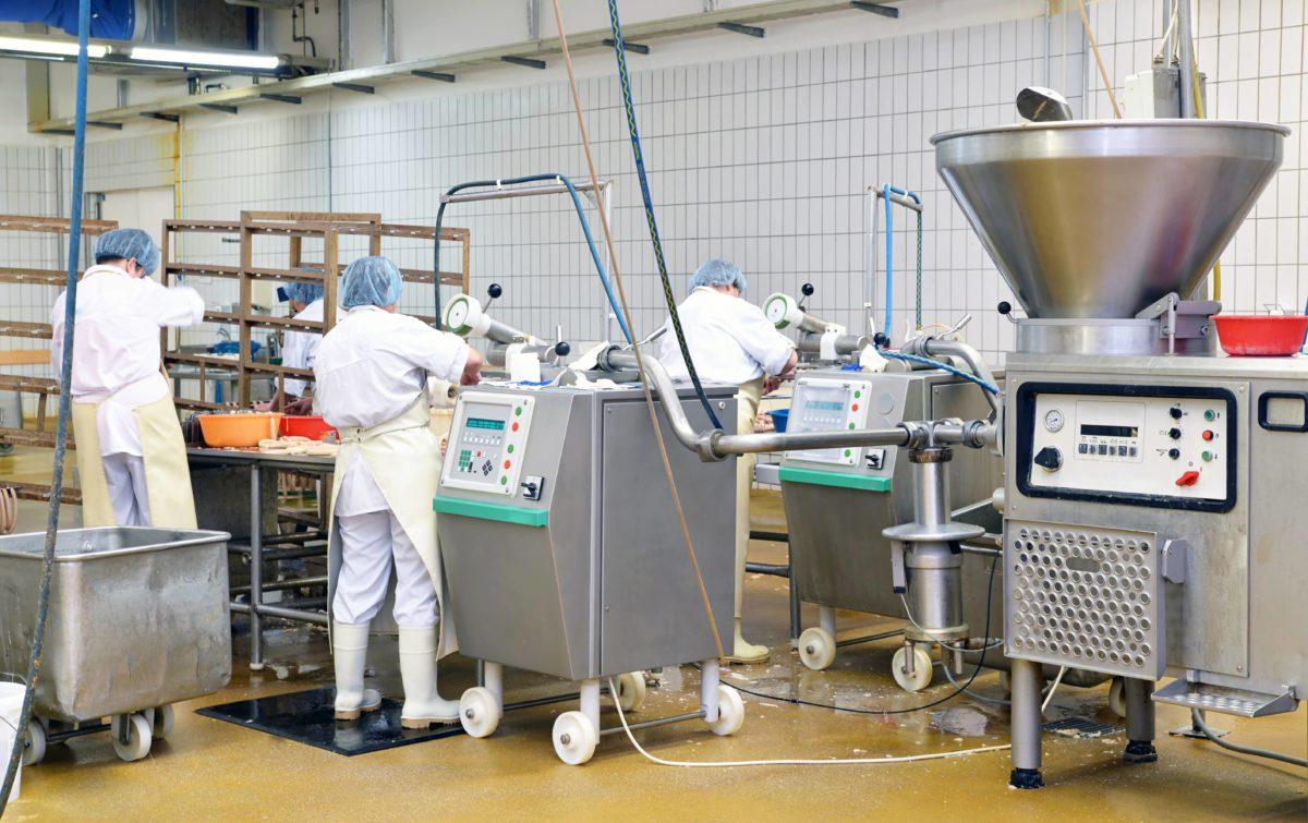 Service de dératisation industrie agroalimentaire - éliminer les souris et rats
